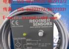 德国RECHNER传感器